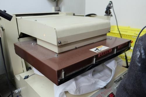 DSCF8555 (500x333)