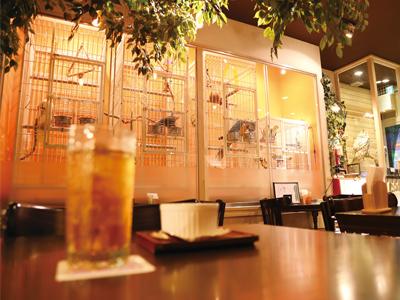 鳥のいるカフェ02